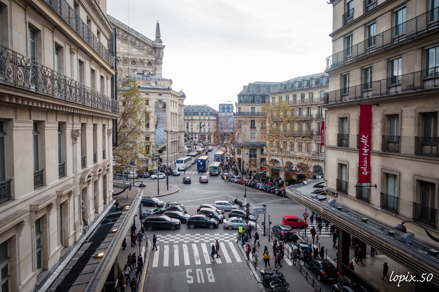 la-féérie-de-noel-aux-galeries-lafayette-absolutelyfemme.com